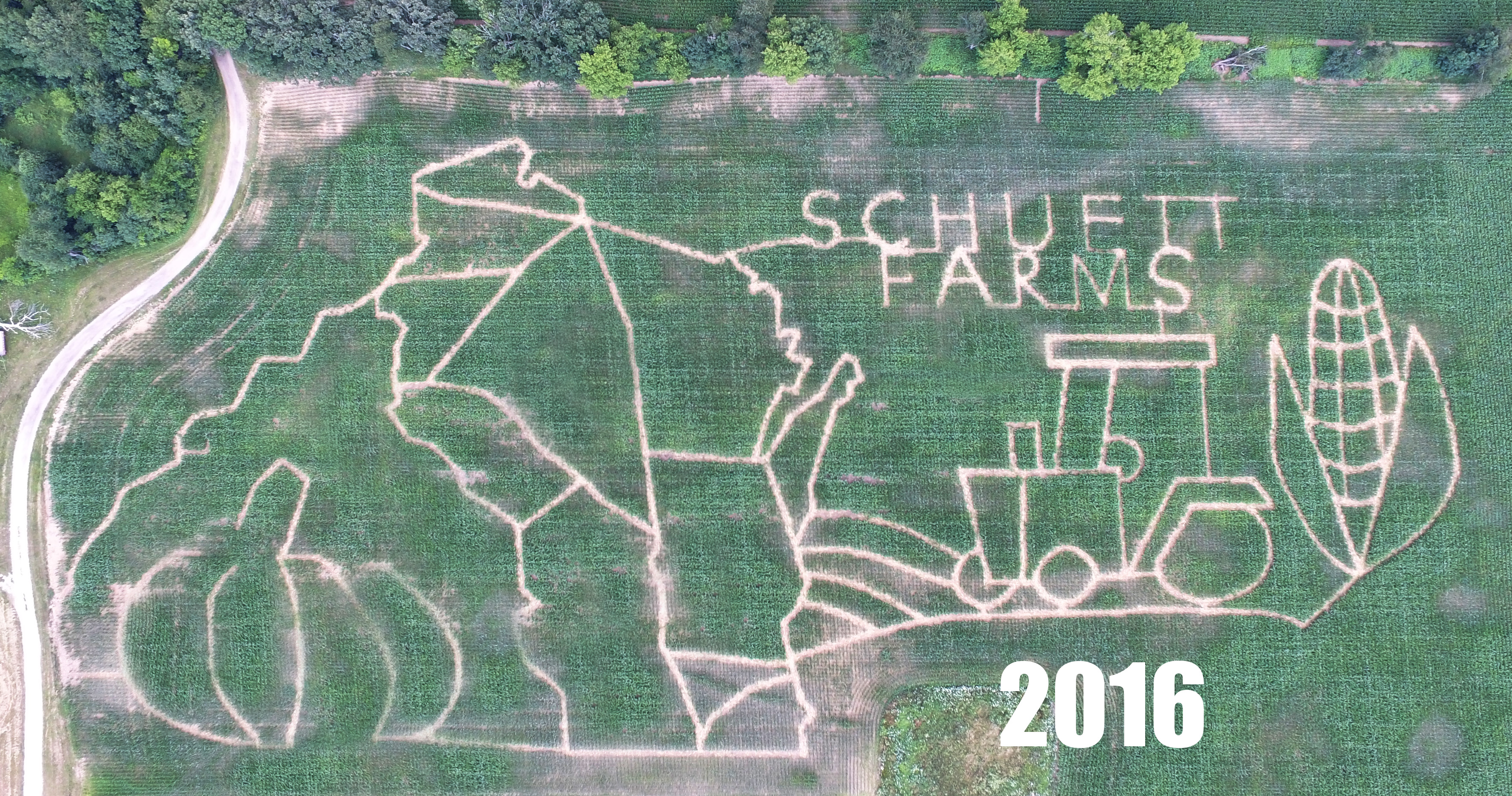 This is a picture of the best corn maze in Wisconsin